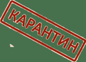 Карантин. Рекомендации для родителей