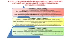Комплексная модель профилактики кризисных ситуаций